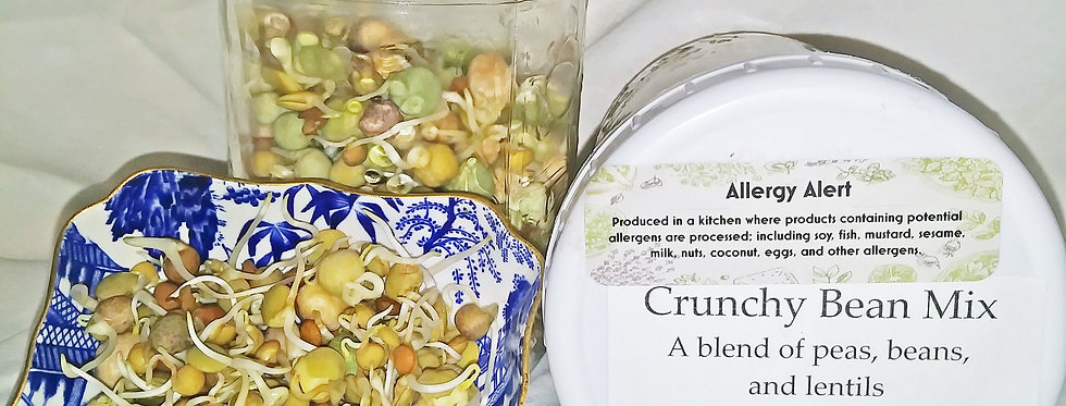 Back Room Farm Crunchy Bean Sprout Mix