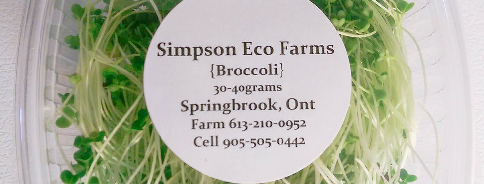 Simpson Eco Farms Microgreens