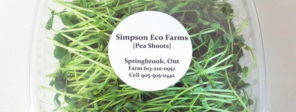 Simpson Eco Farms Pea Shoots