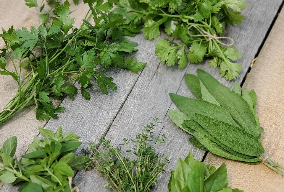 Harmony Garden Fresh Herbs