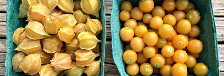 Simpson Eco Farms Ground Cherries