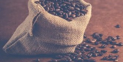 Back Room Farm Special Reserve Coffee