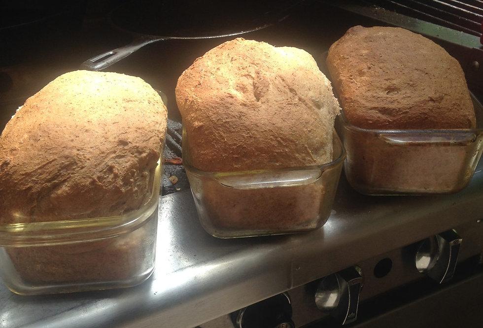Erin's Wholesome Spelt Bread ~ Plain or Sourdough