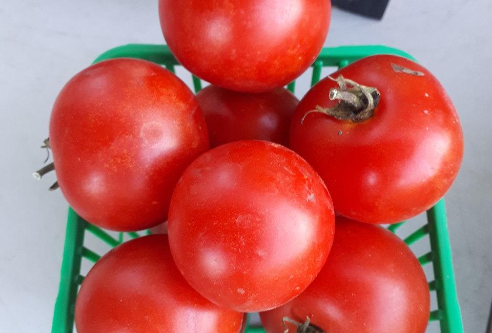 BraeLea Acres Saladette Tomatoes