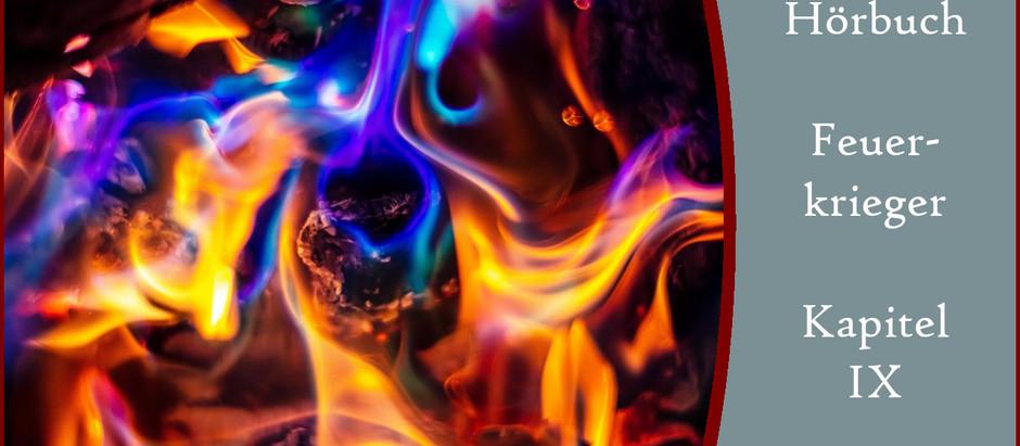 Feuerkrieger - 9. Kapitel: Das Ende der Irrfahrt