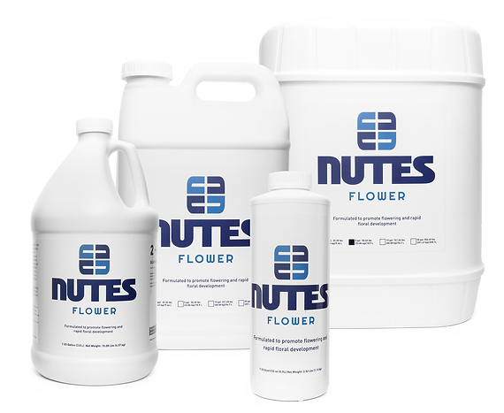 nutes_flower_FAMILY_WEBCLEAR.png