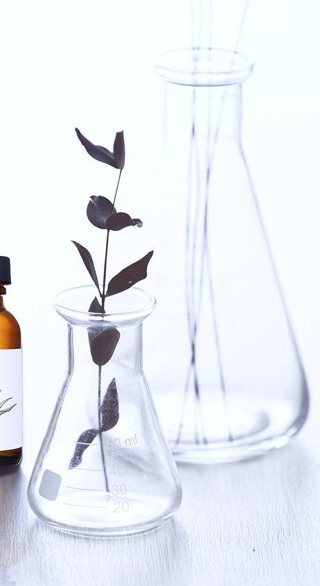 Homeopathy_edited.jpg