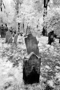 Prague Graveyard
