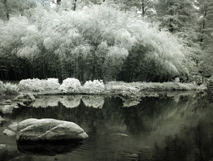 An Alabama Lake