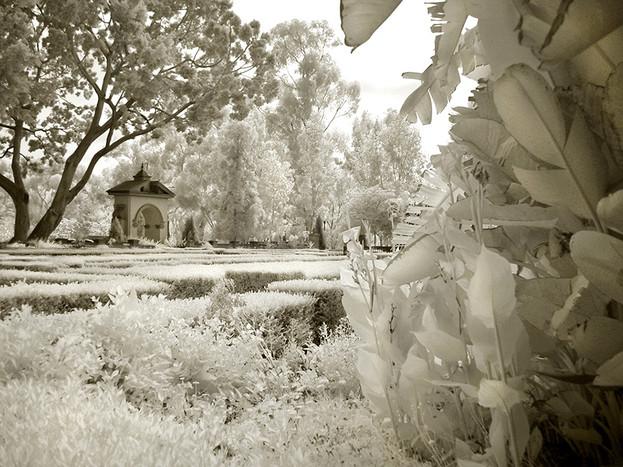 A Stroll in Balboa Park