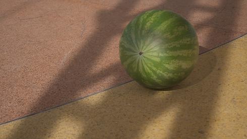 TC_P1_Watermelon1080_0199.tif