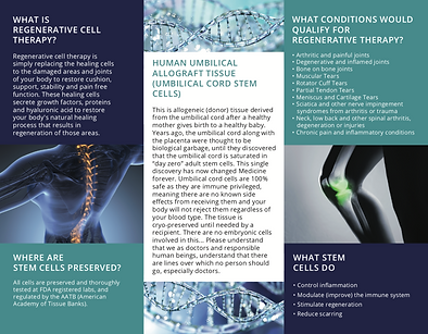 stemcellone-trifold2.png
