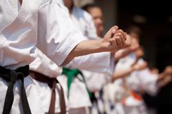 Shaolin Karate Training