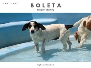 Boleta.png