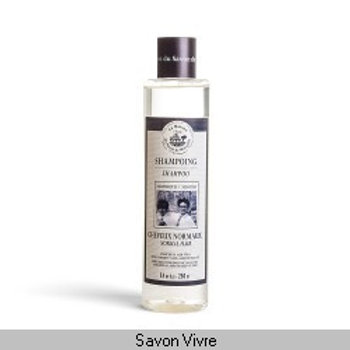 Shampoing 250ml cheveux normaux gamme MISTER