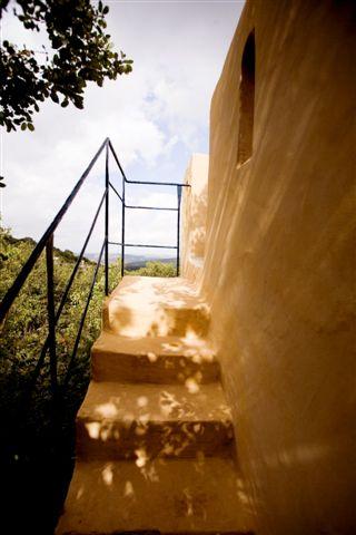 המדרגות לגג