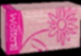 Chloroprene PF Pink-Flat copy.png