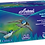 Thumbnail: Avianz Nitrile Powder Free Textured Sterile Surgical Gloves - 280mm