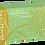 Thumbnail: Blossom Avocado Green Chloroprene Powder Free Textured Exam Gloves