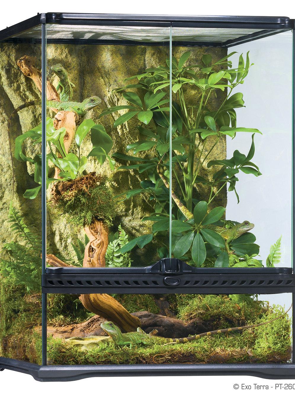 animal house mukwonago