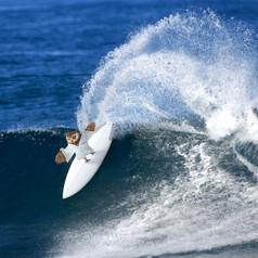 Trip_LW_January_Surf.jpg