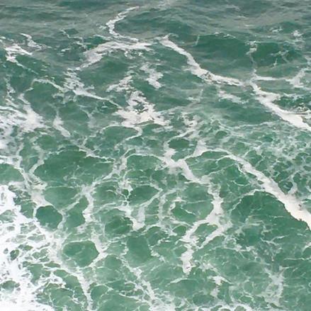 Sea of Green.jpeg
