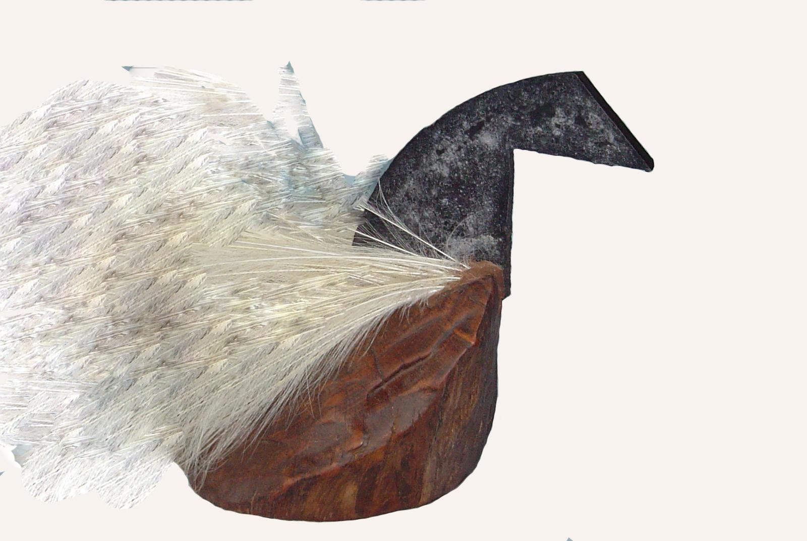 Cisne, Milagros
