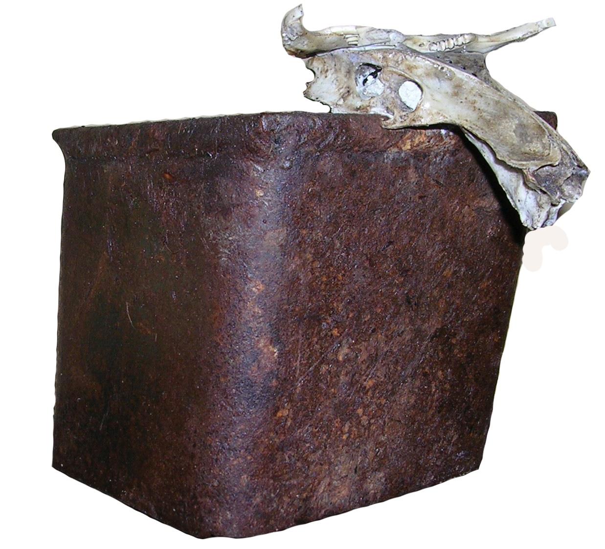 Toro Hierro