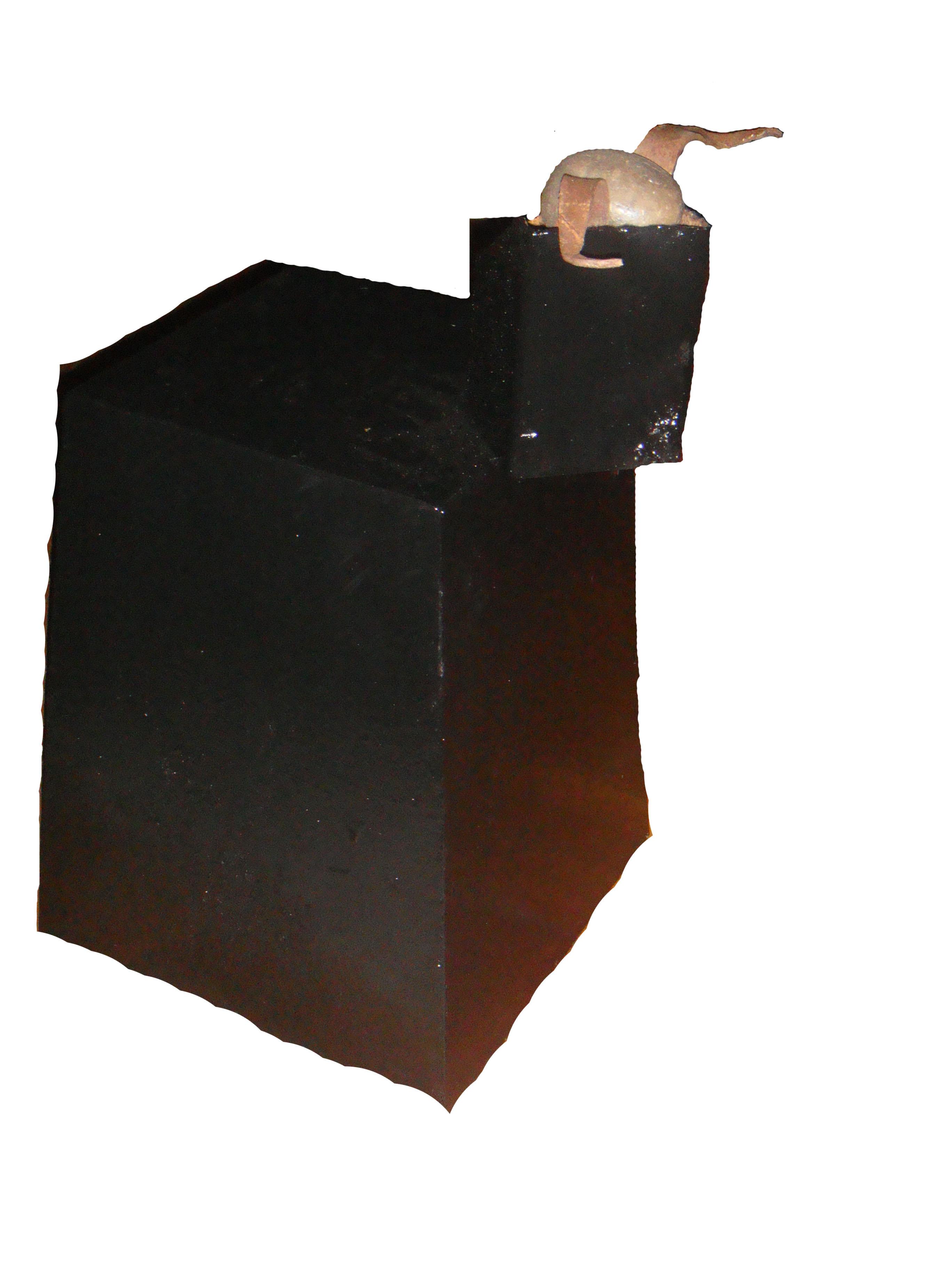 Toro Luz