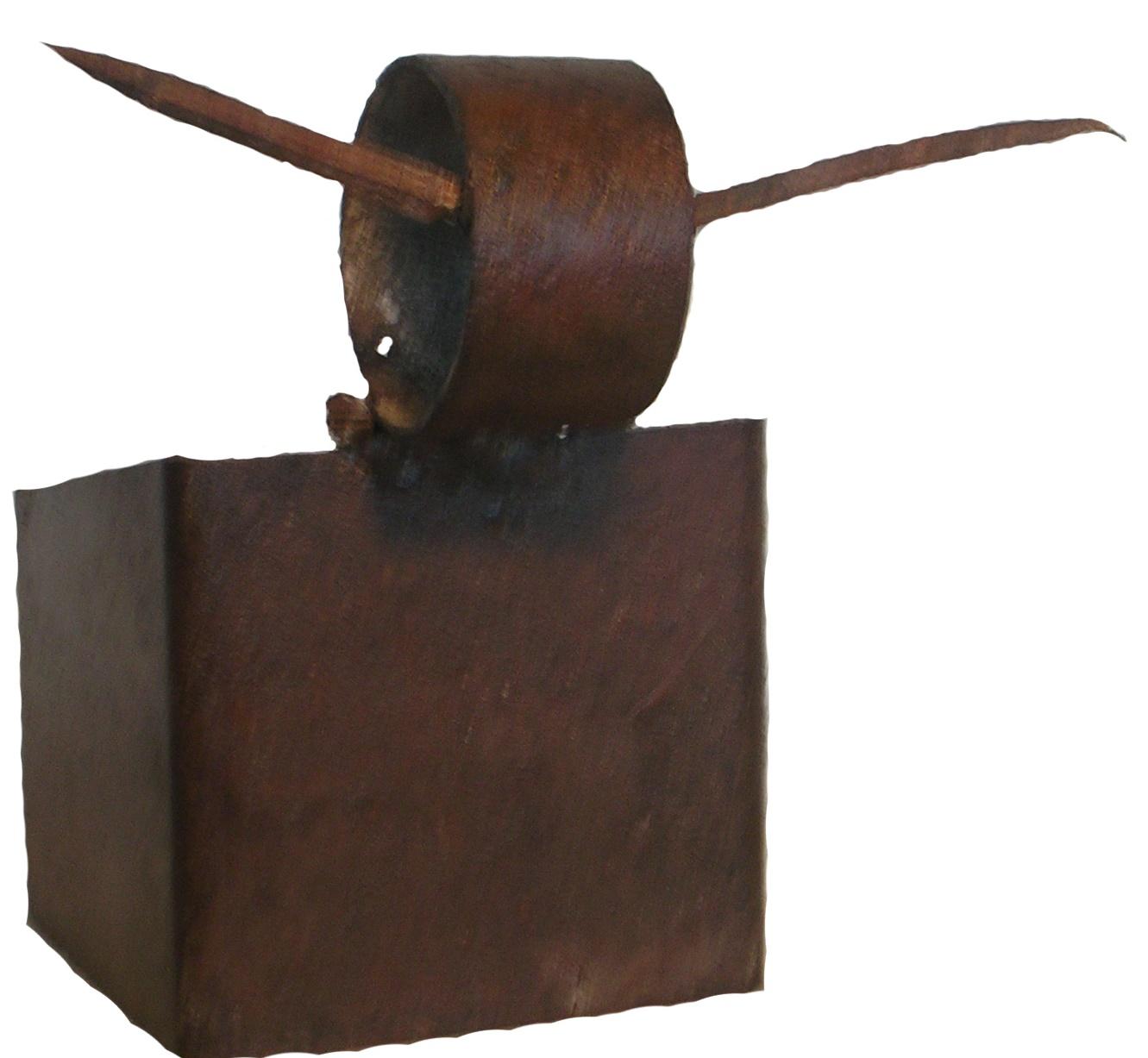 Toro espinoso