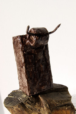 Toro chocolate