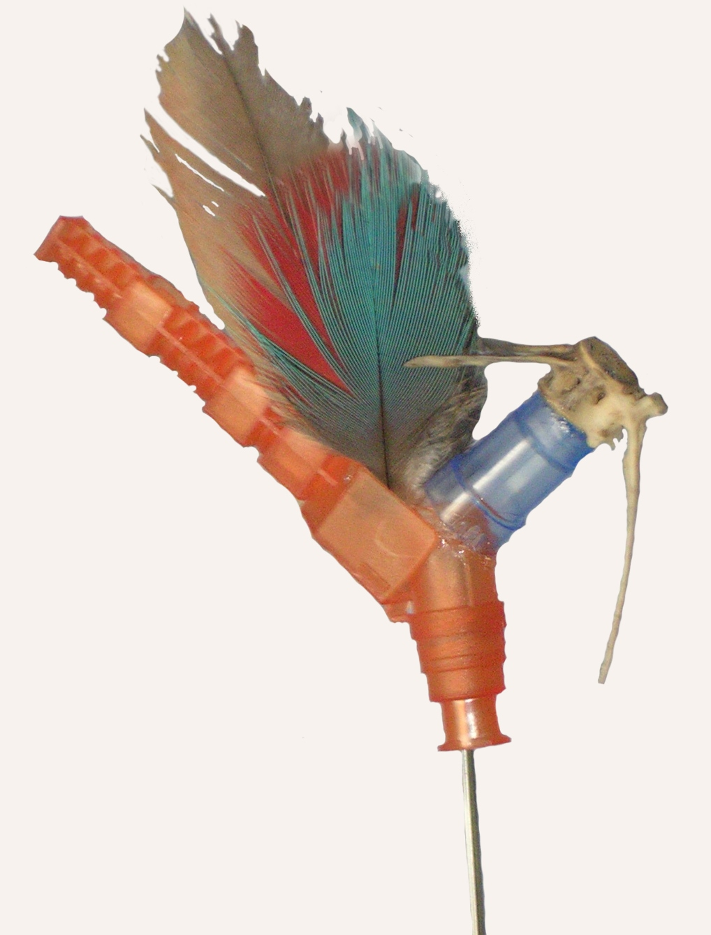 Colibri Rotador