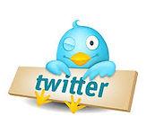 Perfil de Twitter de jesus alberto erminy