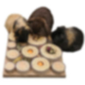 Rosewood_Pet_Products.jpg