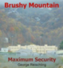 Brushy Cover 2-6.jpg