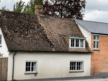 Luxurious timber windows