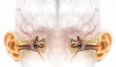 binaural-ear-illustrationcopy.jpeg