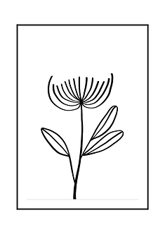 Cardamon Illustration Poster