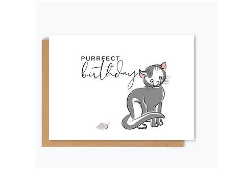 Purrfect Birthday