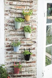 Garden Trellis Set