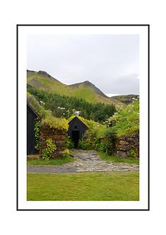 Grass Roof Poster