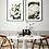 Thumbnail: White Anemone Flower