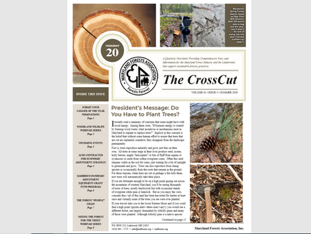 Check out our Summer newsletter!