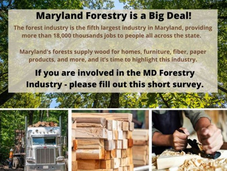 Take the Survey!