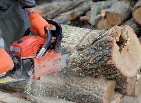 Chainsaw Safety & Maintenance Workshop