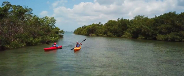 Blueways - St. Pete Canoe and Kayak Trails