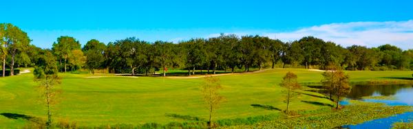 Golf Courses - Mangrove Bay Golf Course