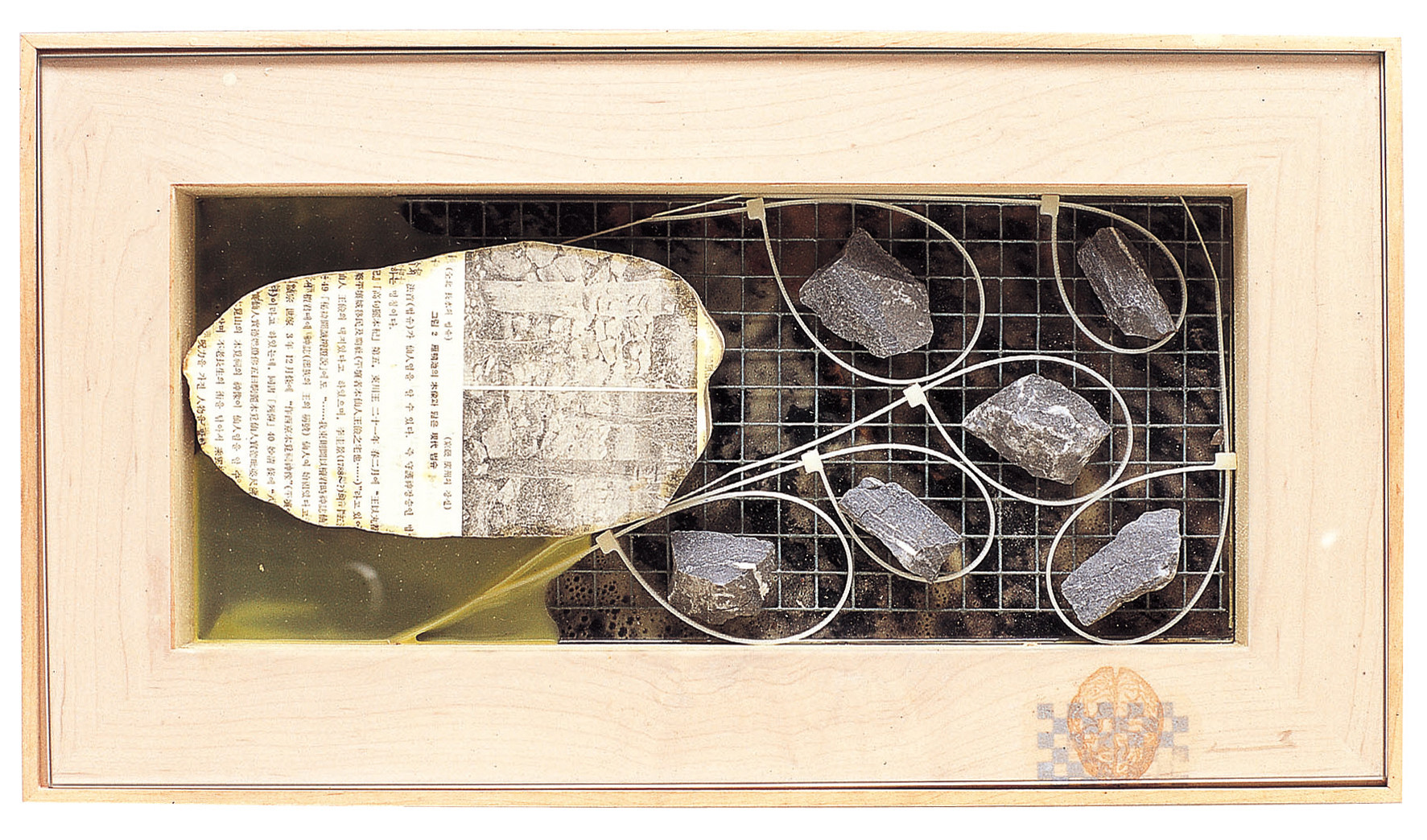 Fossilscape 1