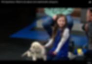 Screen Shot 2019-02-08 at 11.42.39 AM.pn