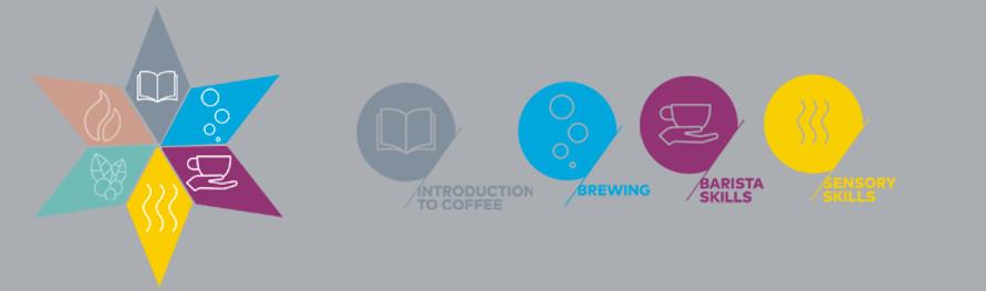 Certificaciones Internacionales de Café, Introducción al Café, Brewing, Barista Skills y Sensory. Specialty Coffee Association en El Salvador